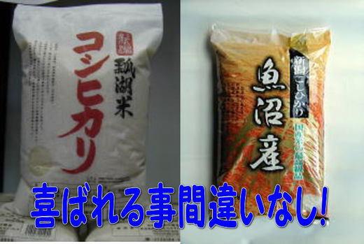 魚沼産コシヒカリ5kg 瓢湖米コシヒカリ5kgのセット.jpg