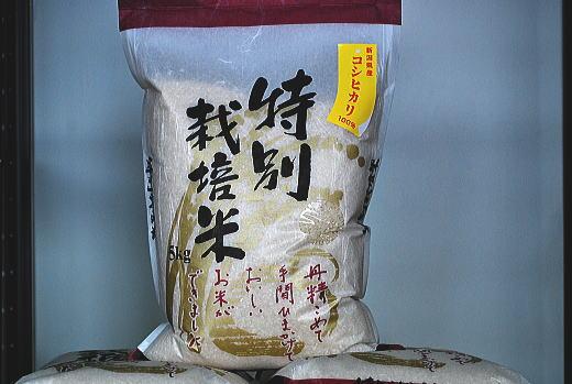 shintokusai.jpg